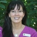 Karen Lee - Kitchener and Waterloo dentistry