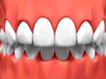 Dentist Sarnia