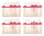 Dentist in St. Albert